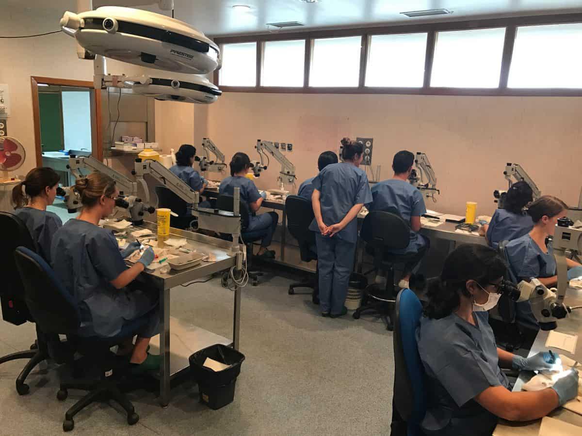 cirujano plástico de UCP Estética participa en curso de Microcirugía
